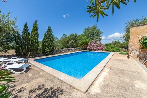 Sonniger Poolbereich mit großen Terrassen