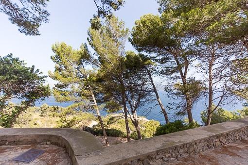 Umgebung Weg zur Ermita de Victoria