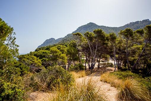 Umgebung Blick auf den Atalaya Berg