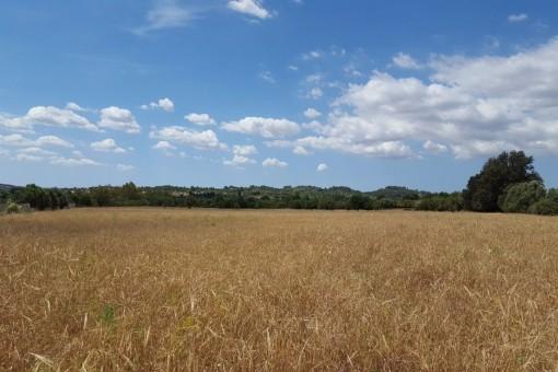 Ruhiges Grundstück bei Selva