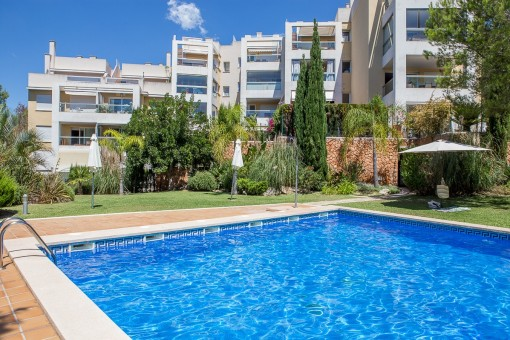 fabelhaftes penthouse mit pool dachterrasse und meerblick in la bonanova kaufen. Black Bedroom Furniture Sets. Home Design Ideas