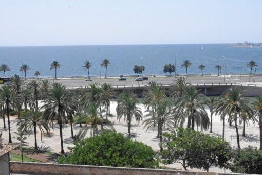 Baños Arabes Mallorca: Mallorca Altstadt: Immobilien mieten in Palma de Mallorca Altstadt auf