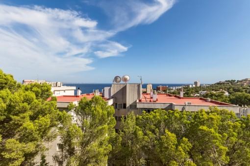Tolle Wohnung mit Meerblick und großer Terrasse in Cas Catala
