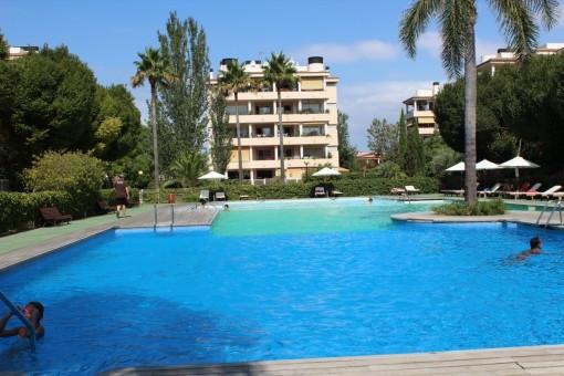 Familienfreundliches und großes Apartment in ruhiger Gegend mit schönem Swimmingpool.