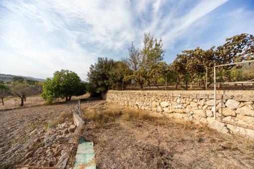Feld ist von einer Natursteinmauer umgeben