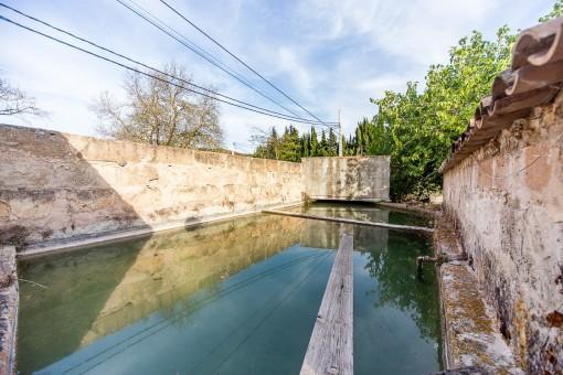 Swimmingpool ist von einer Mauer umgeben