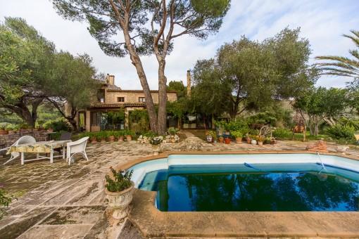 Poolbereich und Terrasse