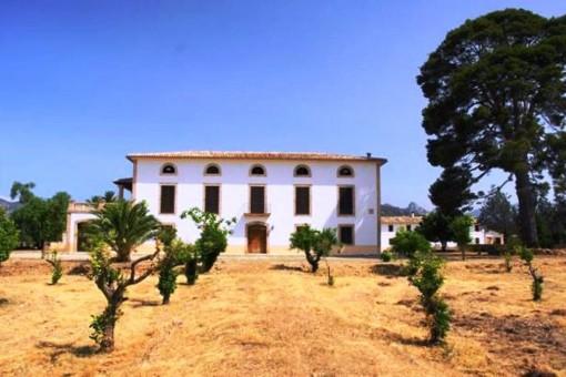 Tolles Finca-Anwesen mit riesen Grundstück und viel Potential in Son Sardina