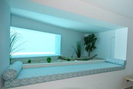 Blick auf den Swimmingpool vom Erdgeschoss aus