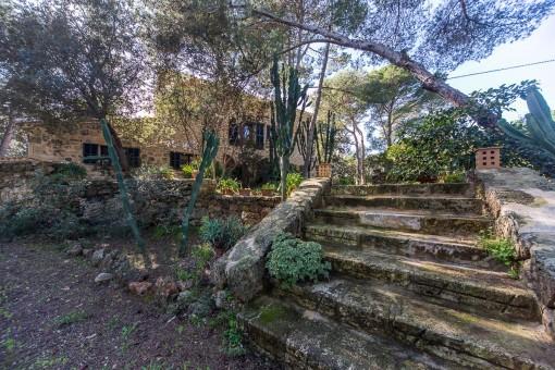 Steintreppe führt zur Finca