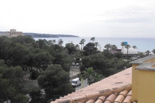 Wohnung Mieten Mallorca Playa De Palma