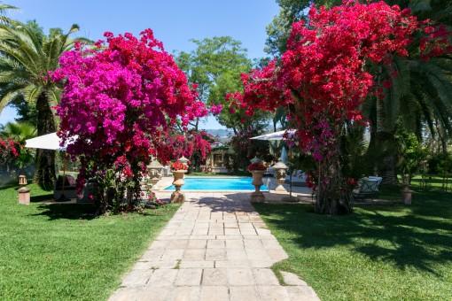 Poolbereich mit schönem Garten