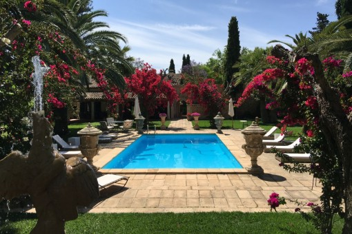 Der Poolbereich wird von einem schönen Garten umgeben