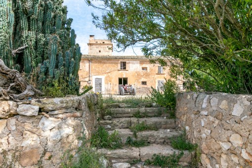 Ein Treppenaufgang führt zur Finca