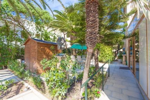 Terrasse mit Palmen