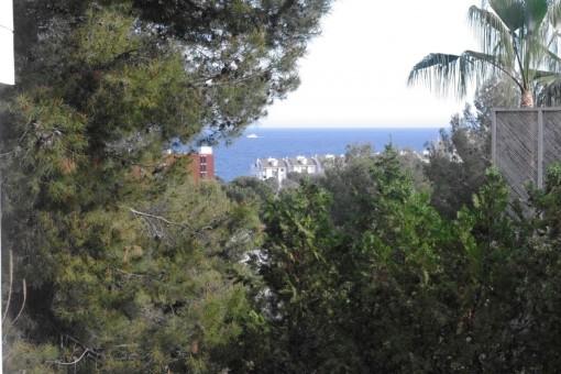 Neu renoviertes und komplett eingerichtetes Luxusapartment in Cas Catala