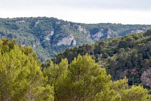 Bergblick von der Finca aus