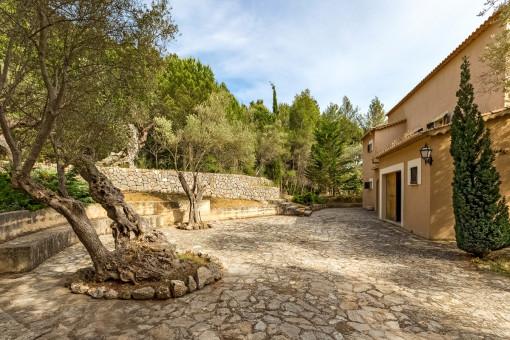 Mediterrane Terrasse