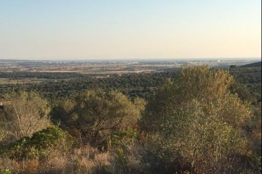 10.000 qm Meerblick-Grundstück mit Projekt für eine Traumvilla in Puntiro