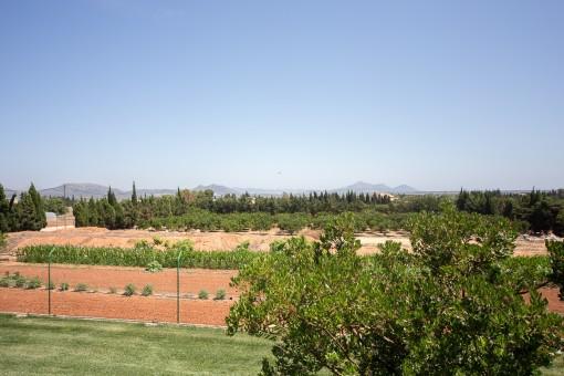 Großzügiges Grundstück von über 21.000 qm