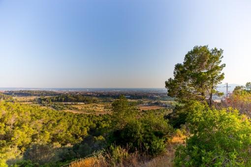 Blick über Sa Cabaneta und von Palma bis über das Tramuntanagebirge