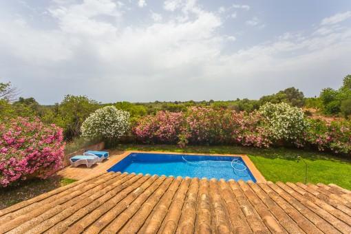 Blick über den Poolbereich und den tollen Garten