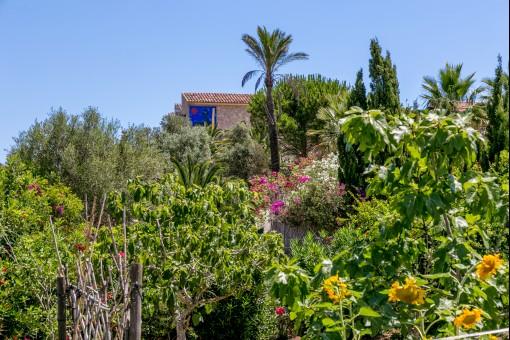 Blick vom Garten auf die Finca