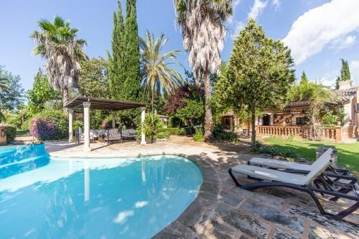 Poolbereich umgeben vom mediterranen Garten