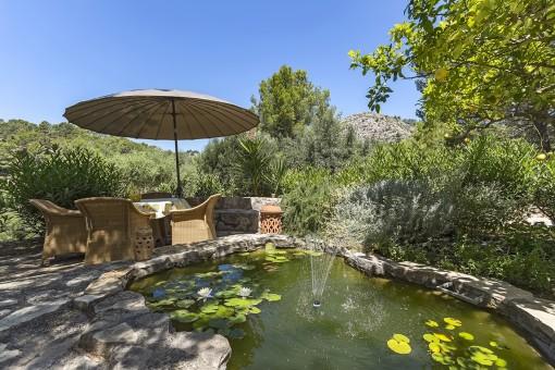 Beschauliche Terrasse mit Gartenteich