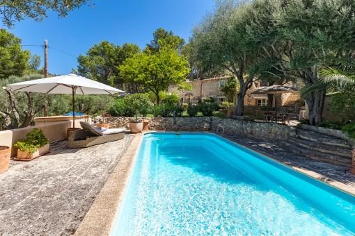 Herrlicher Garten-und Poolbereich