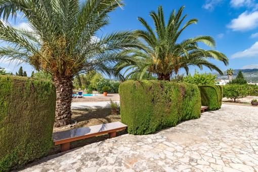 Natursteine und Palmen