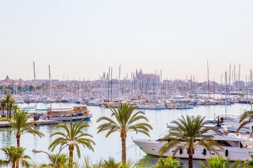 Schön aufgeteilte Wohnung direkt am Paseo Maritimo mit Blick auf den Hafen Palmas