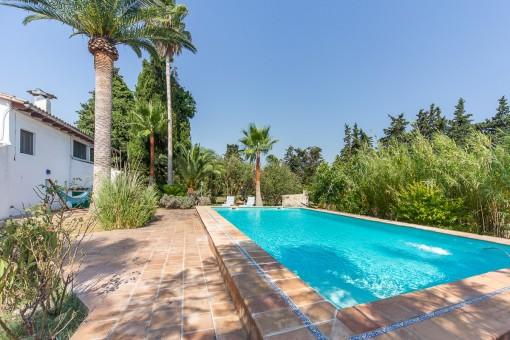 Leben unter Palmen und Orangen! Finca in schöner Lage mit großem Pool und eigenem Wasser bei Sencelles