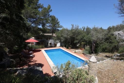 Grundstück mit mediterraner Bepflanzung und Pool