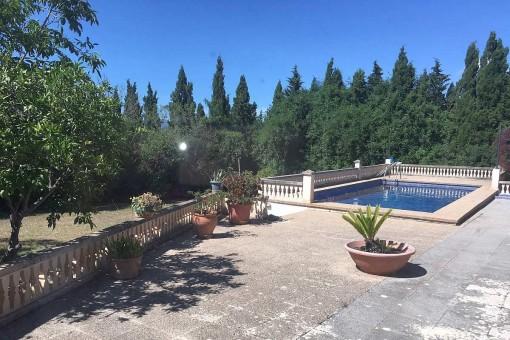 Schöne mallorquinische Finca mit Pool in Biniali zum Mietkauf