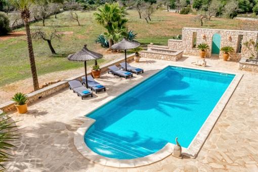 Blick auf den Pool von der Terrasse aus
