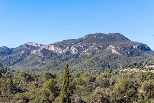 Atemberaubender Blick auf die Berge