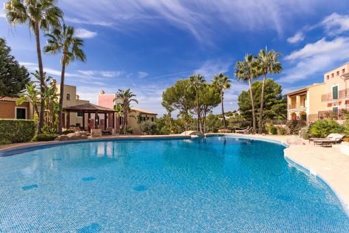 Penthouse mit Meerblick in einer der besten Wohgegenden von Nova Santa Ponsa