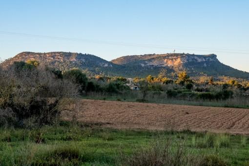 Großes Fincagrundstück in Llucmajor mit Baulizenz