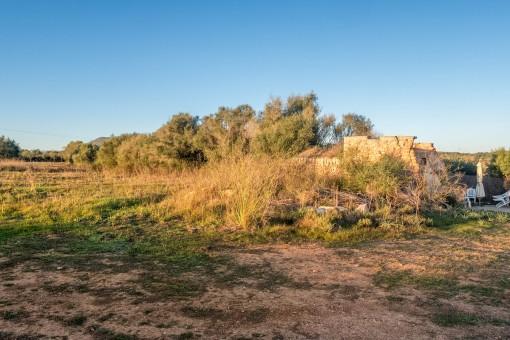 Weite Landschaft des Anwesens