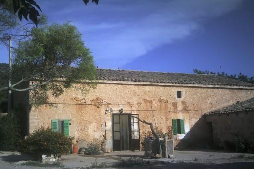 Perfekte Infrastruktur, begehbare Höhlen, mehr als 50 ha Land: Historische Finca bei Santa Eugenia