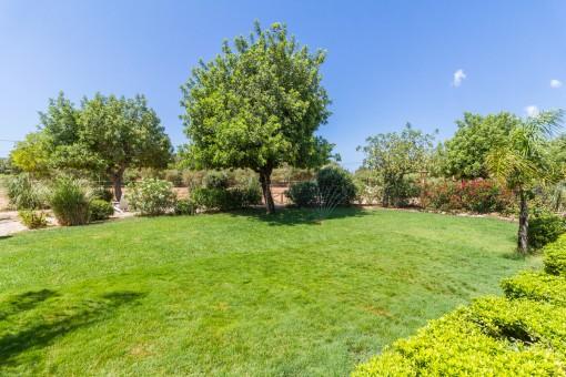 Großer, mediterraner Garten