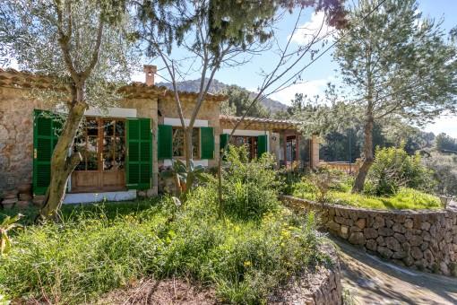 Wilder Garten umringt das Anwesen