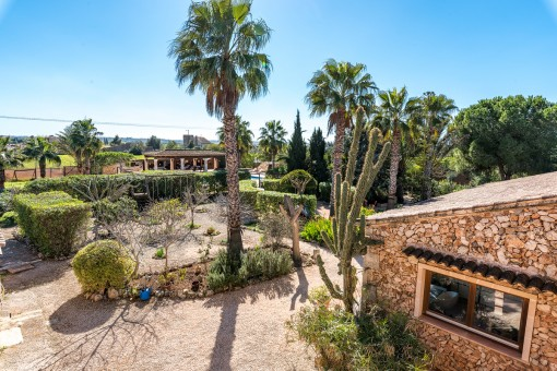 Idyllische Finca mit Palmengarten zwischen Campos und Es Trenc