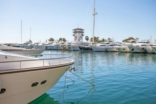 Die Wohnung liegt nur wenige Schritte von der Marina von Puerto Portals entfernt