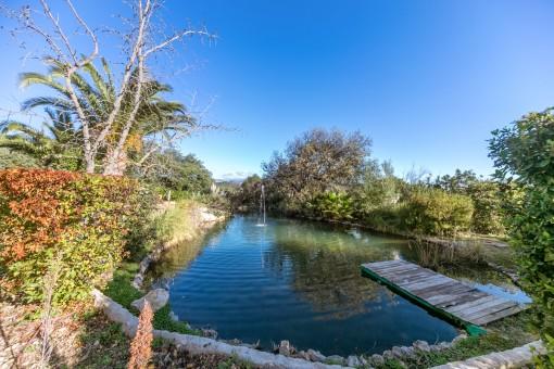 Natürlicher Teich des Grundstücks