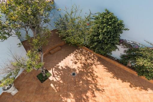 Schöne Terrasse mit Pflanzen
