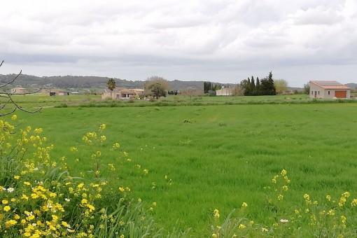 Das Grundstück wird von grünen Feldern umgeben