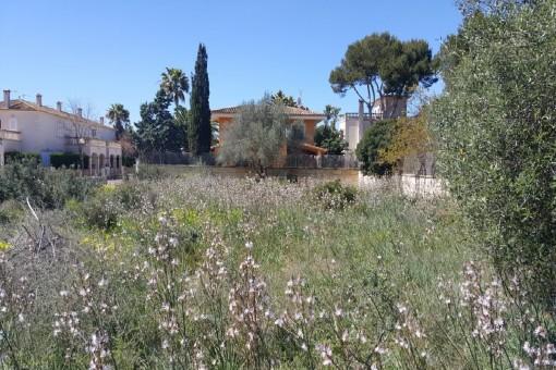 Exclusives Grundstück für eine Villa in Sa Rapita mit Meerblick