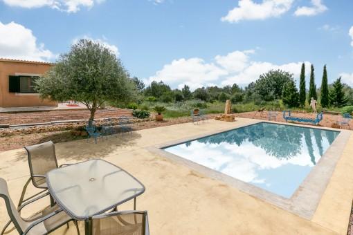 Fantastischer Pool für Sommermonate